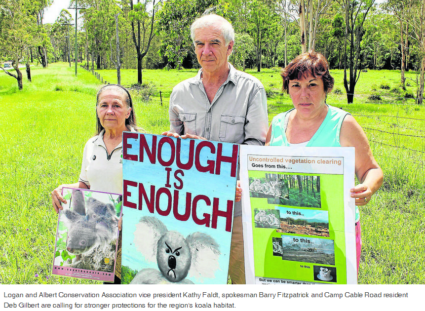 calling-for-stronger-protections-koala-habitat JTimes14Jan2015
