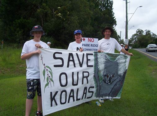 save-our-koalas-no-prc