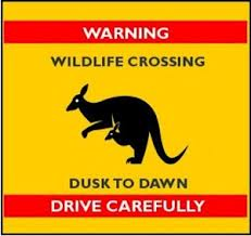 warning-drive-slowly